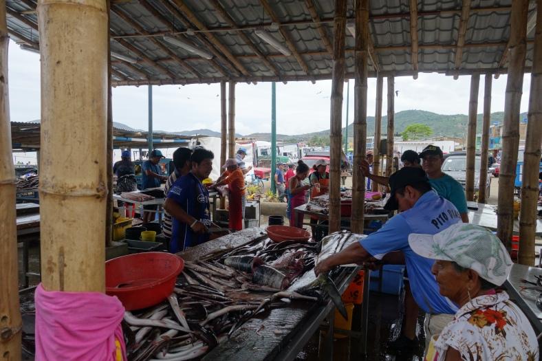 Fish market in Porto Lope