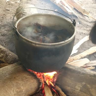 Ayahuasca boiling