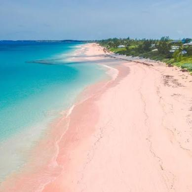 pink-beaches-harbor-island-cr-getty-548295287