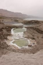 Ein Gedi, Dead Sea, Israel