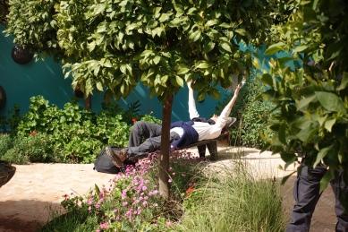 Heller garden, Marrakech, Morocco