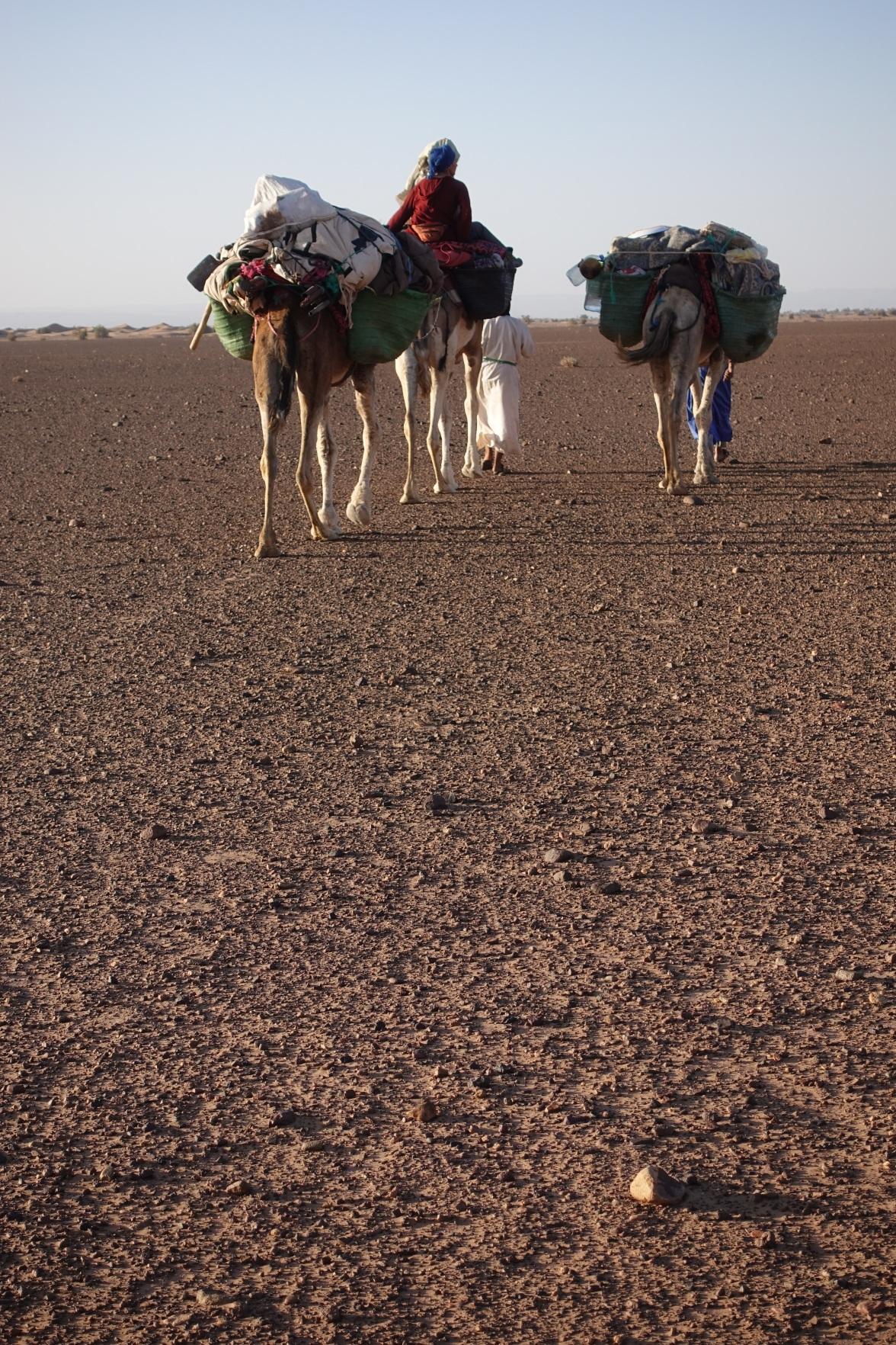 Sahara, Mhamid, Morocco