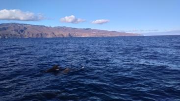 La Gomera, Atlantic ocean